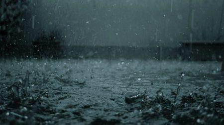 CultFit Rain