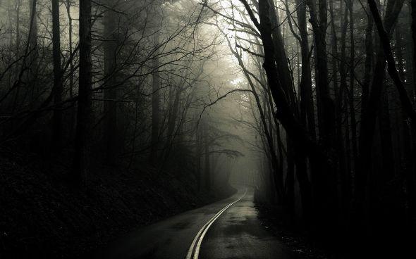 CultFit Road