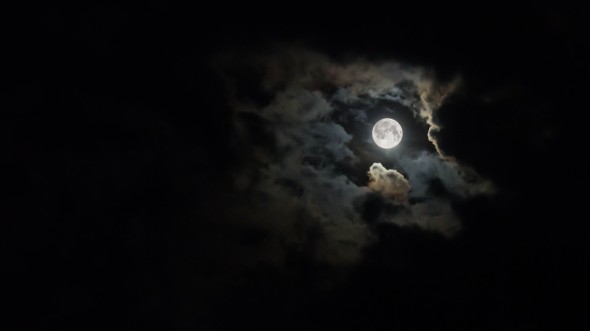 CultFit Moon