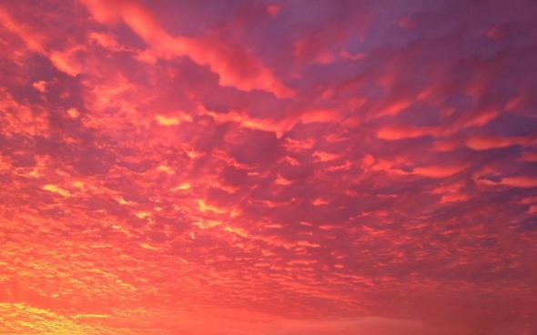 CultFit Sunrise