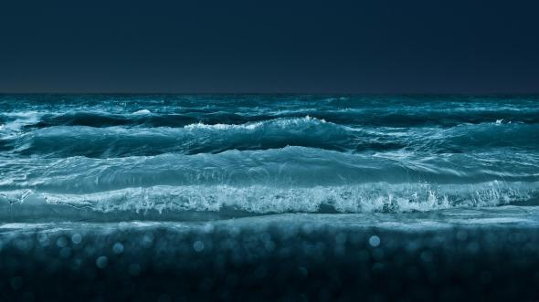 CultFit Waves