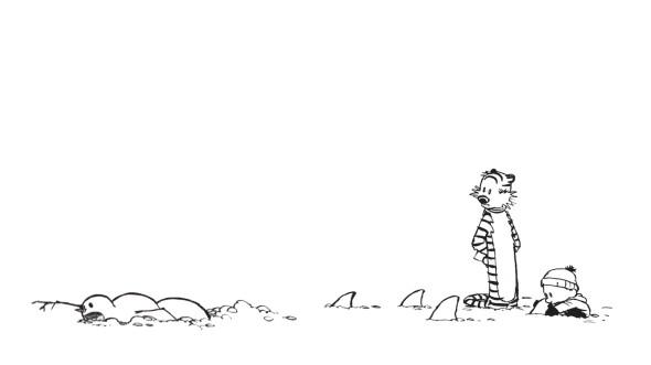 CultFit Calvin