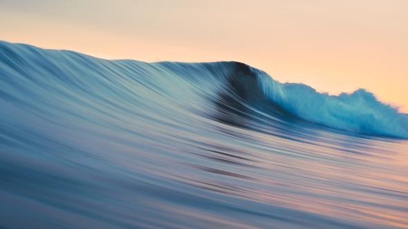 CultFit Wave