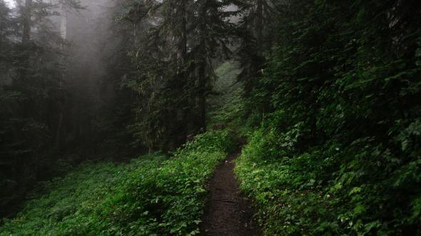 CultFit Path